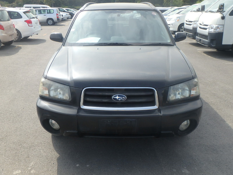 FORESTER-4